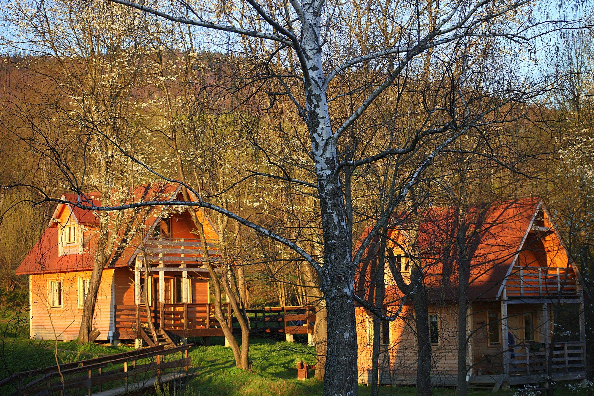 domki-wiosna