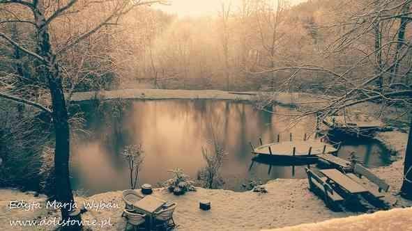 ogrod_zima1