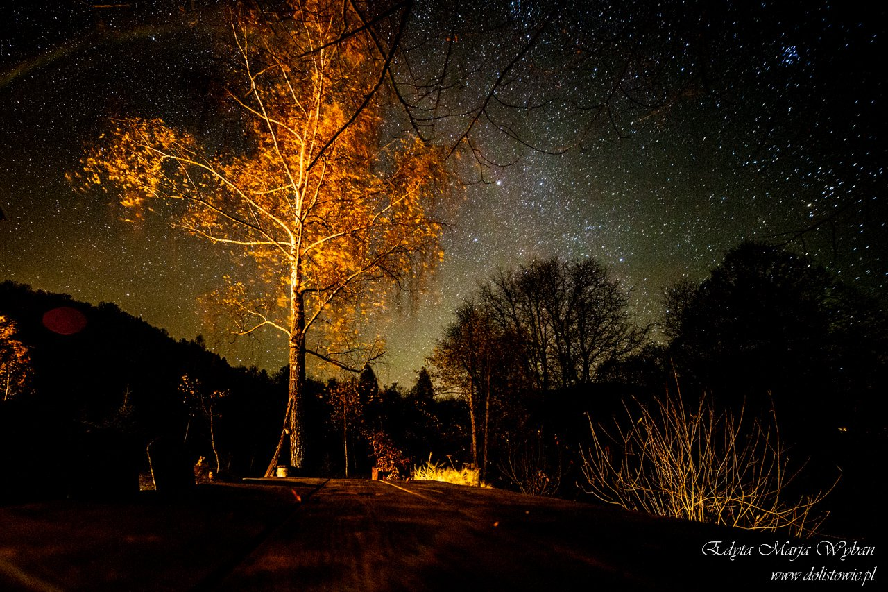 nocne-listopad-20151108-_MG_3400