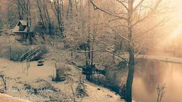ogrod_zima2